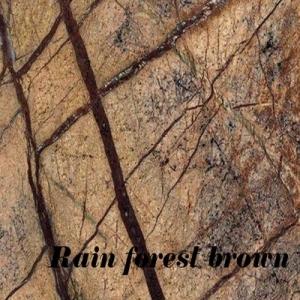 rain forest braun_výsledok