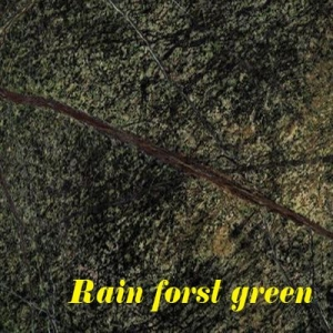 rain forest green_výsledok